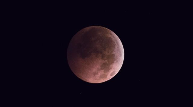 LS Pink Moon