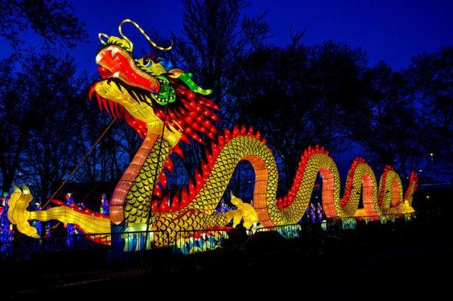 LS China Lights